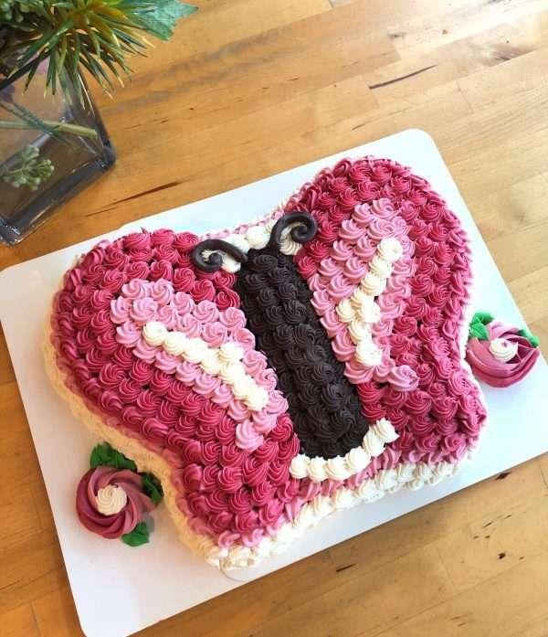 vanilla butterfly princess cake
